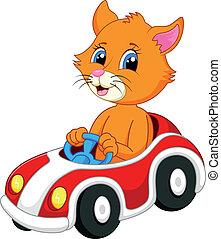 Cute cat cartoon driving car