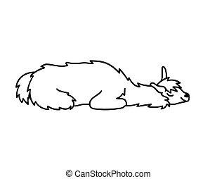 Vector illustration of cute character south America lama ...