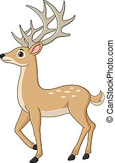 Cute deer cartoon isolated on white background