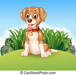 Cute dog sitting on the meadow
