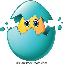 Cute Easter chicks in egg shell