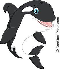 vector illustration of Cute killer whale cartoon