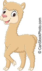 Cute little alpaca cartoon on white background