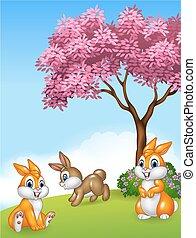 Cute little bunny in grass