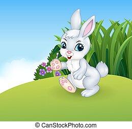 Cute little bunny walking