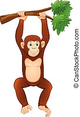 cute monkey hanging on the tree