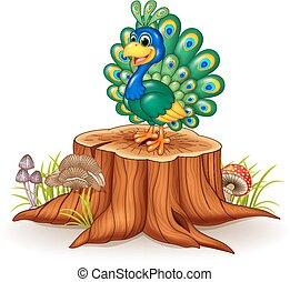 Cute peacock on tree stump