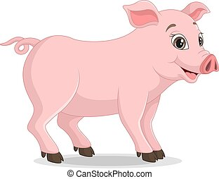 Cute pig cartoon on white background