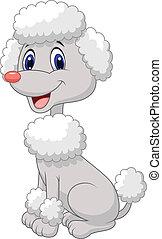 Vector illustration of Cute poodle cartoon