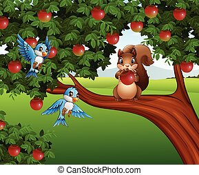 Cute squirrel on the apple tree