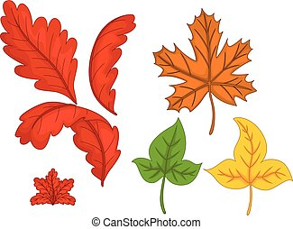 cute various autumn leaves cartoon