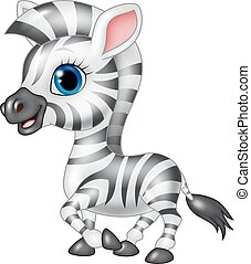 Cute zebra posing isolated