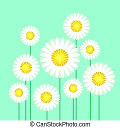 vector illustration of daisy on blue sky background