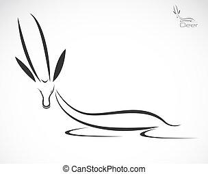 Vector illustration of deer