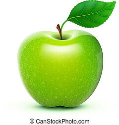 green apple - Vector illustration of detailed big shiny ...