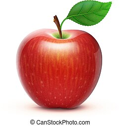 red apple - Vector illustration of detailed big shiny red...