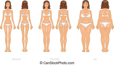 Vector illustration of different  body types, set