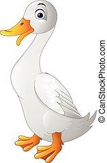 Duck funny cartoon