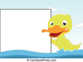 Duck Swimming With Blanksign