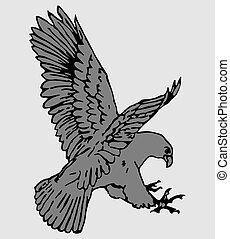 eagle - Vector illustration of eagle