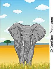 Elephant with African savannah back