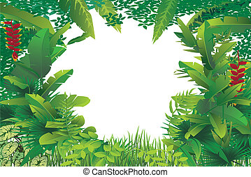 exotic tropical forest - vector illustration of exotic...