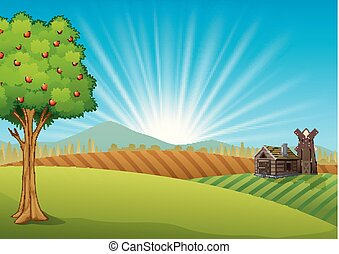 Farm landscape with green field and sunrise