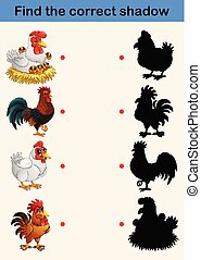 Find the correct shadow: farm animals (chicken and rooster)...