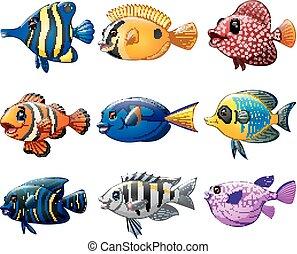 Fish cartoon set