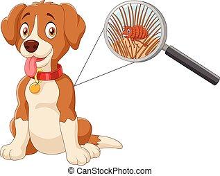 Vector illustration of flea Infested Dog