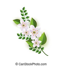 Vector illustration of floral composition with branch of white flowers and green leaves.