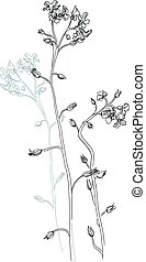 Vector illustration of flowers - Vector a monochrome sketch...