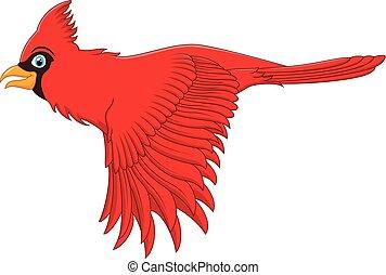 flying cardinal bird - vector illustration of flying ...