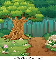 Forest background with dirt road