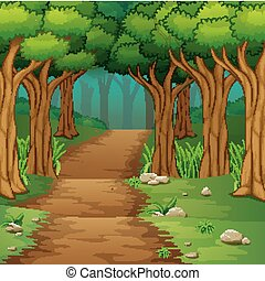 Forest scene with dirt road