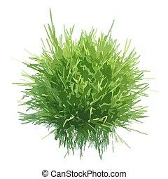 Vector illustration of fresh green grass ball