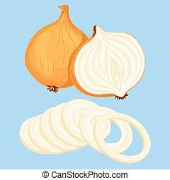 Vector illustration of fresh onion