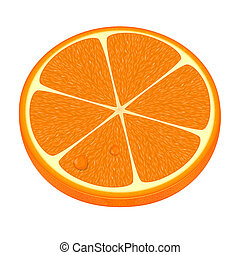 Vector illustration of fresh orange