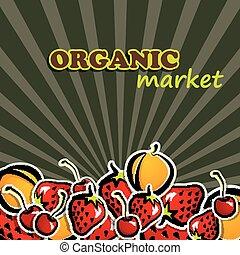 vector illustration of fruit. organic food concept