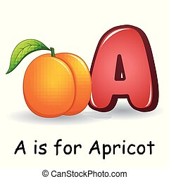 Fruits alphabet: A is for Apricot Fruits