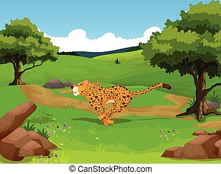 funny cheetah in the jungle