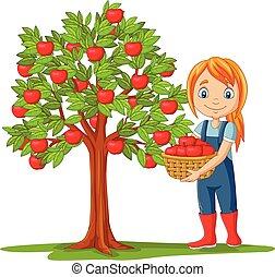 Girl farmer gathering apples in basket