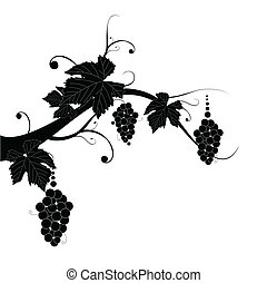 grape silhouette