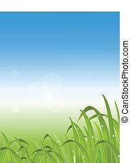 illustration of grass backgr - vector illustration of grass...