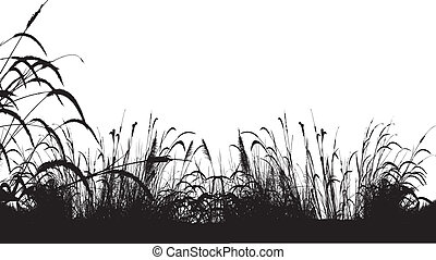 grass silhouette background - vector illustration of grass ...
