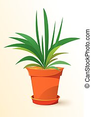 green Chlorophytum plant in a pot