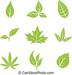 Green Leaves isolated on white - Vector Illustration of...