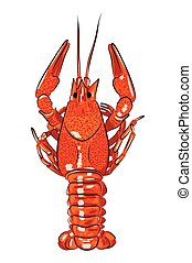 vector illustration of hand-drawn realistic glossy crawfish