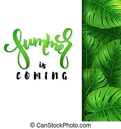 vector illustration of hand lettering poster - summer is coming with paper sheet on a background monstera leaves