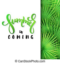 vector illustration of hand lettering poster - summer is coming with paper sheet on a background fan palm leaves